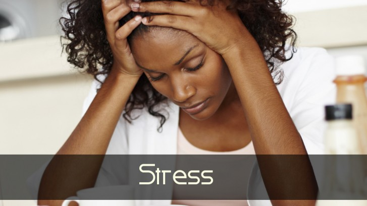 Stress Emotional and Environmental Stressors Homeopathic Remedy Holistic Natural Medicine Center Lakeland Central Florida