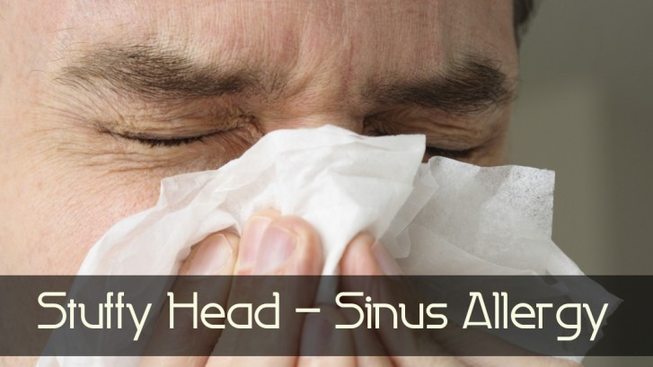 Stuffy Head Sinus Allergy Allergies Homeopathic Remedy Holistic Natural Medicine Center Lakeland Central Florida