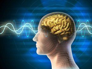 Natural Neurofeedback 1
