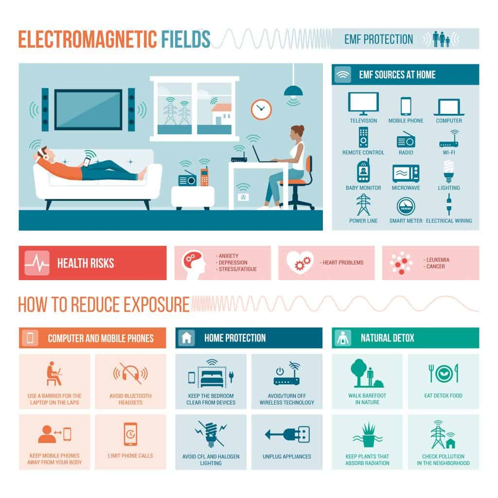 Electromagnetic fields in the home infograph